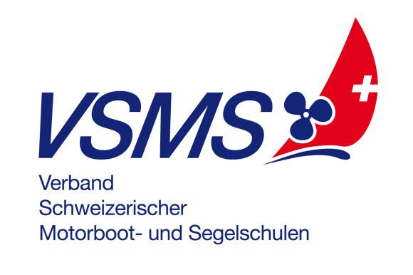 Logo VSMS